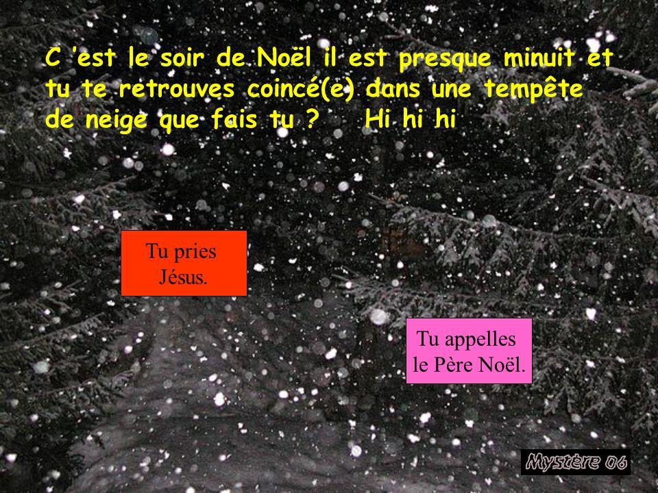 C est le soir de Noël il est presque minuit et tu te retrouves coincé(e) dans une tempête de neige que fais tu .