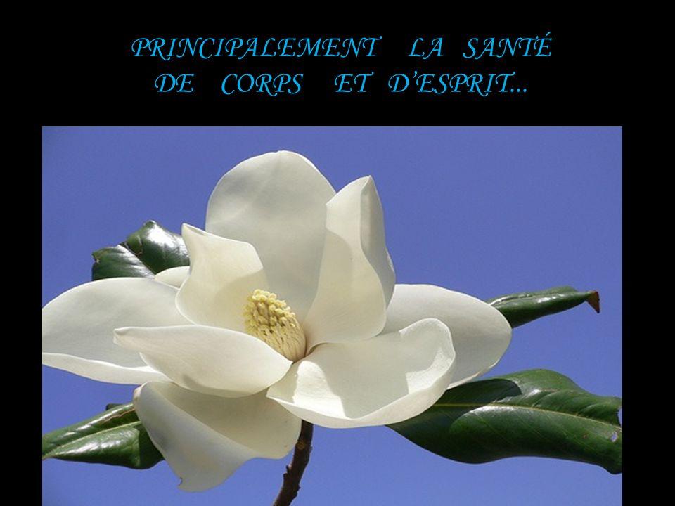 JE SOUHAITE QUE LA NOUVELLE ANNÉE 2 0 1 2 VOUS APPORTE LE MEILLEUR !!
