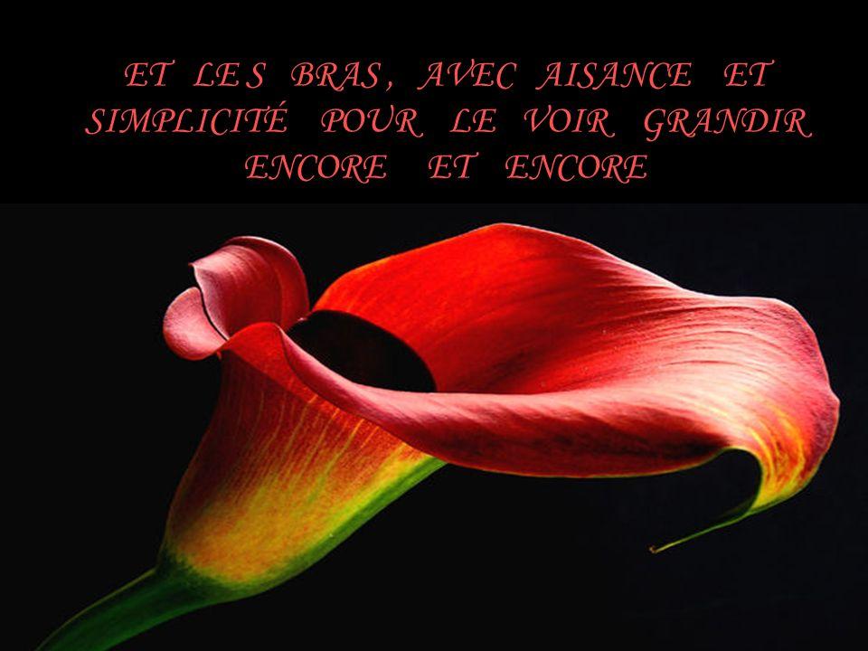 JE VOUS SOUHAITE DE PRENDRE LE MEILLEUR DE CE QUE 2 0 11 VOUS A LAISSÉ, ET DE LINVESTIR EN 2012 EN OUVRANT VOTRE COEUR