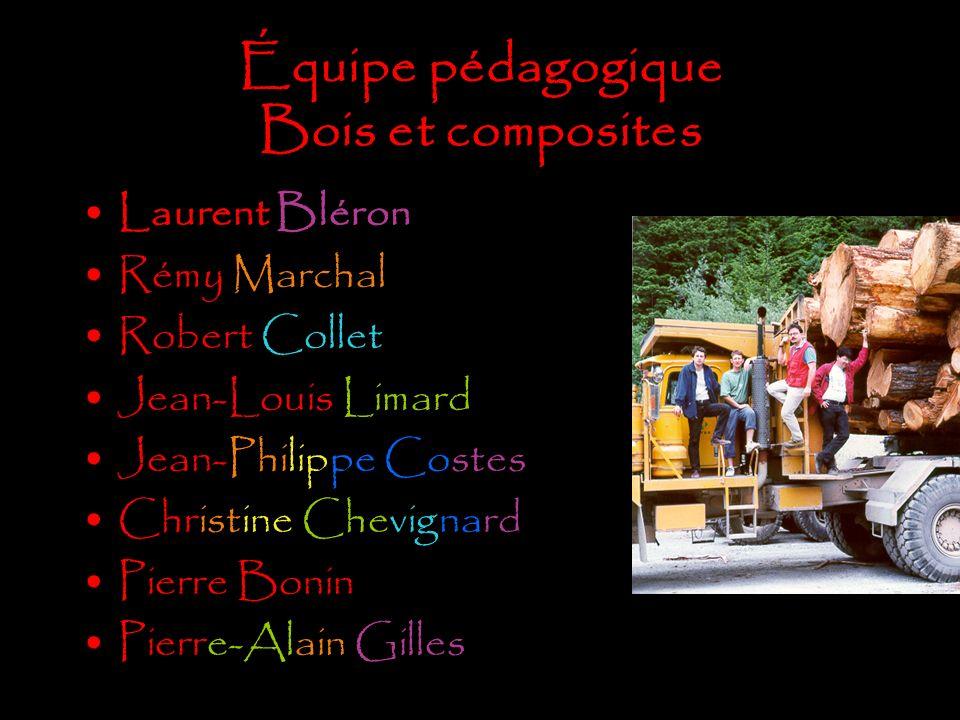 Équipe pédagogique Bois et composites Laurent Bléron Rémy Marchal Robert Collet Jean-Louis Limard Jean-Philippe Costes Christine Chevignard Pierre Bon
