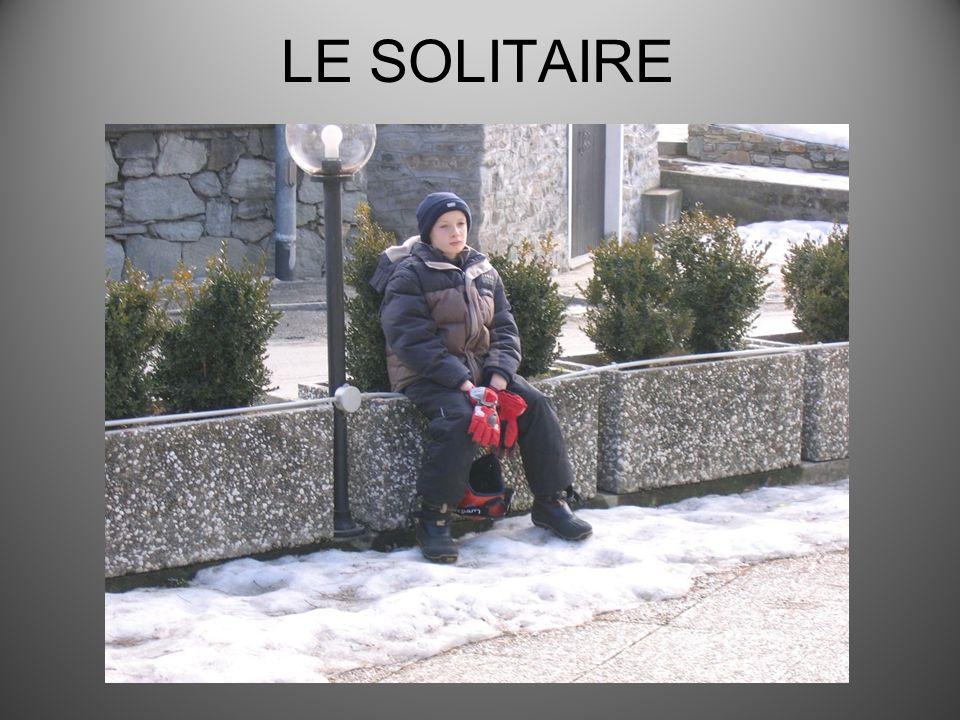 LE SOLITAIRE