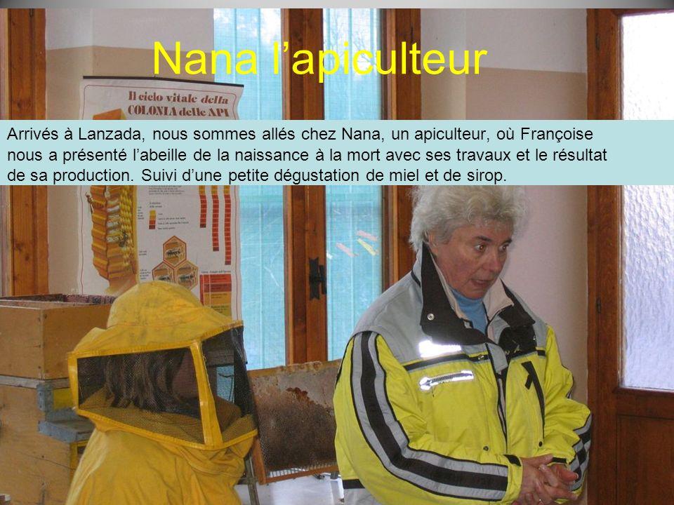 Nana lapiculteur Arrivés à Lanzada, nous sommes allés chez Nana, un apiculteur, où Françoise nous a présenté labeille de la naissance à la mort avec s
