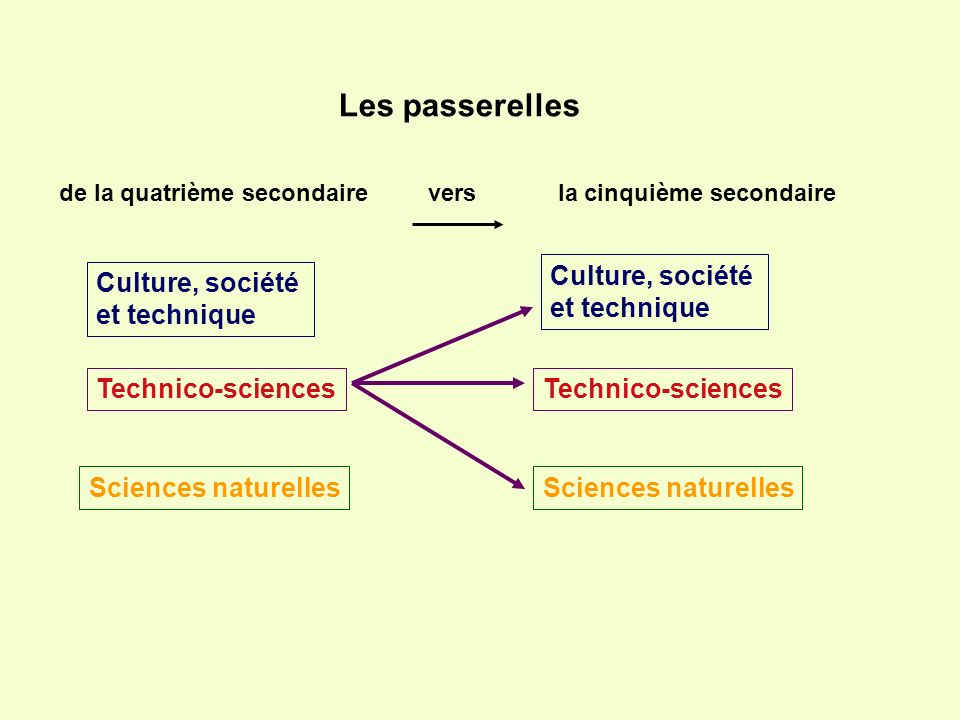 Technico-sciences Sciences naturelles Culture, société et technique Culture, société et technique Les passerelles de la quatrième secondaire vers la c