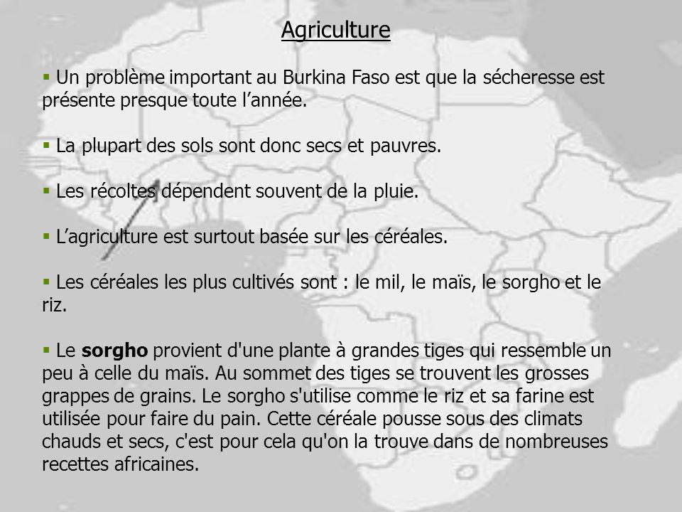 Agriculture Un problème important au Burkina Faso est que la sécheresse est présente presque toute lannée. La plupart des sols sont donc secs et pauvr