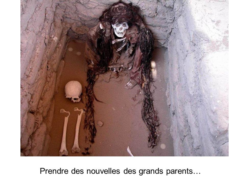 Prendre des nouvelles des grands parents…