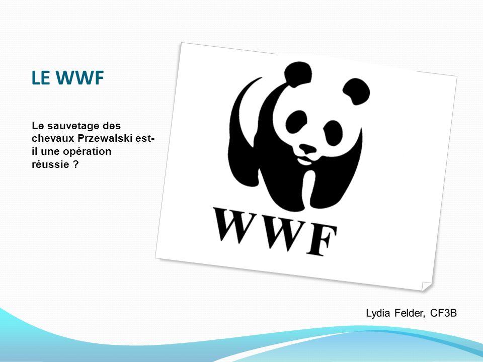 LE WWF Le sauvetage des chevaux Przewalski est- il une opération réussie ?