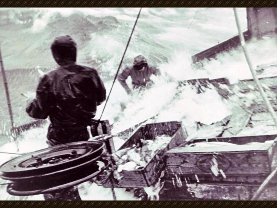 Se dépêtrer l'un de l'autre Sur les chalutiers des années 1960, il fallait se mettre en travers au vent pour embarquer le chalut, marcher dedans pour
