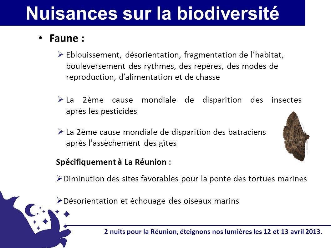 Nuisances sur la biodiversité Faune : Eblouissement, désorientation, fragmentation de lhabitat, bouleversement des rythmes, des repères, des modes de