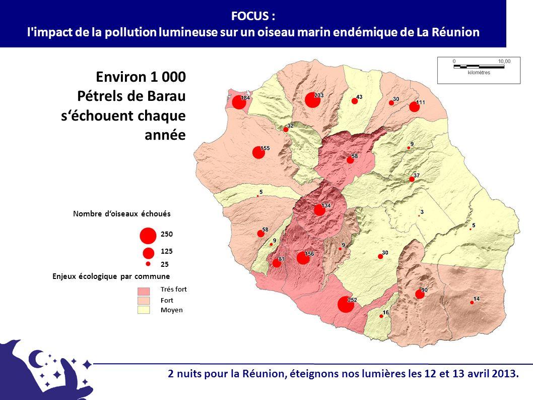 FOCUS : l'impact de la pollution lumineuse sur un oiseau marin endémique de La Réunion Environ 1 000 Pétrels de Barau séchouent chaque année Nombre do