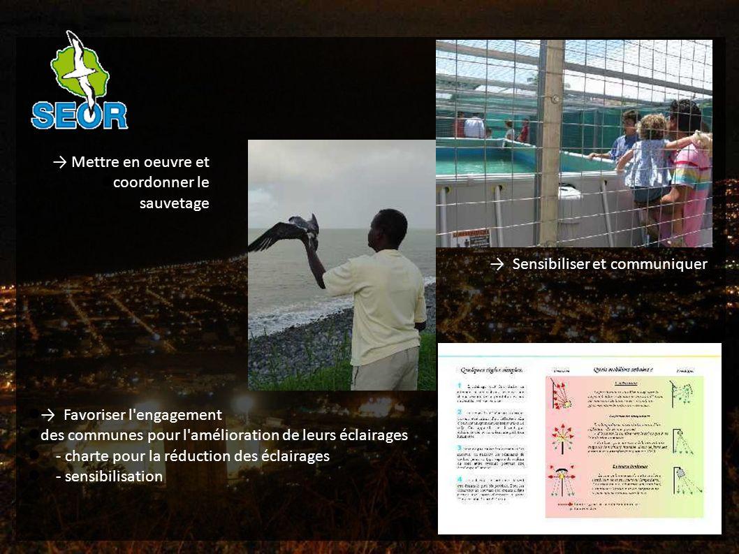 Mettre en oeuvre et coordonner le sauvetage Sensibiliser et communiquer Favoriser l engagement des communes pour l amélioration de leurs éclairages - charte pour la réduction des éclairages - sensibilisation