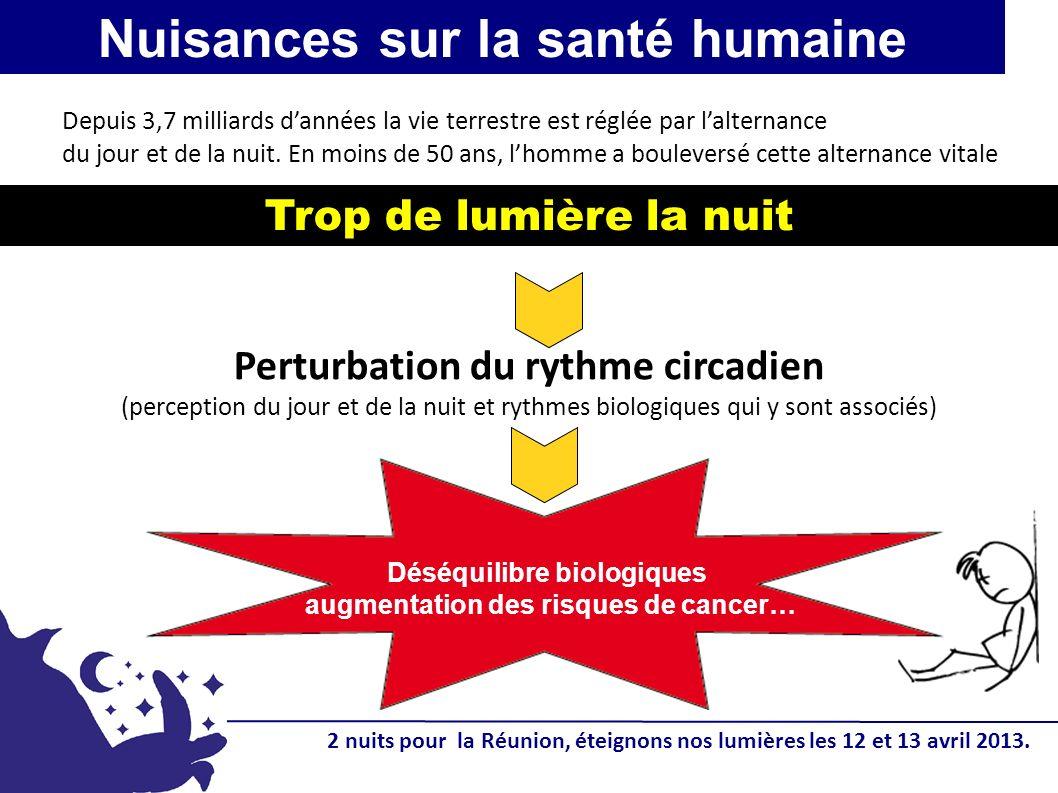 Nuisances sur la biodiversité Oiseaux marins A La Réunion : 2 nuits pour la Réunion, éteignons nos lumières les 12 et 13 avril 2013.