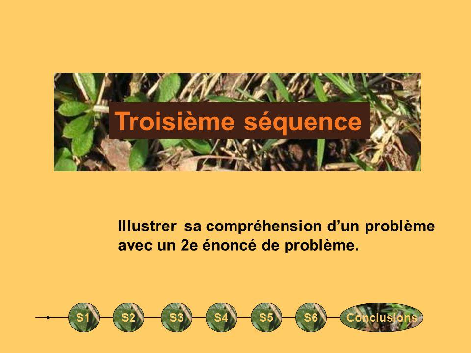 Troisième séquence S1S2S3S4S5S6Conclusions Illustrer sa compréhension dun problème avec un 2e énoncé de problème.