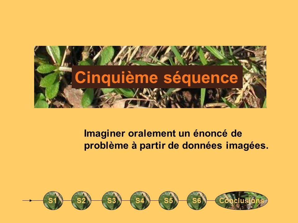 Cinquième séquence S1S2S3S4S5S6Conclusions Imaginer oralement un énoncé de problème à partir de données imagées.