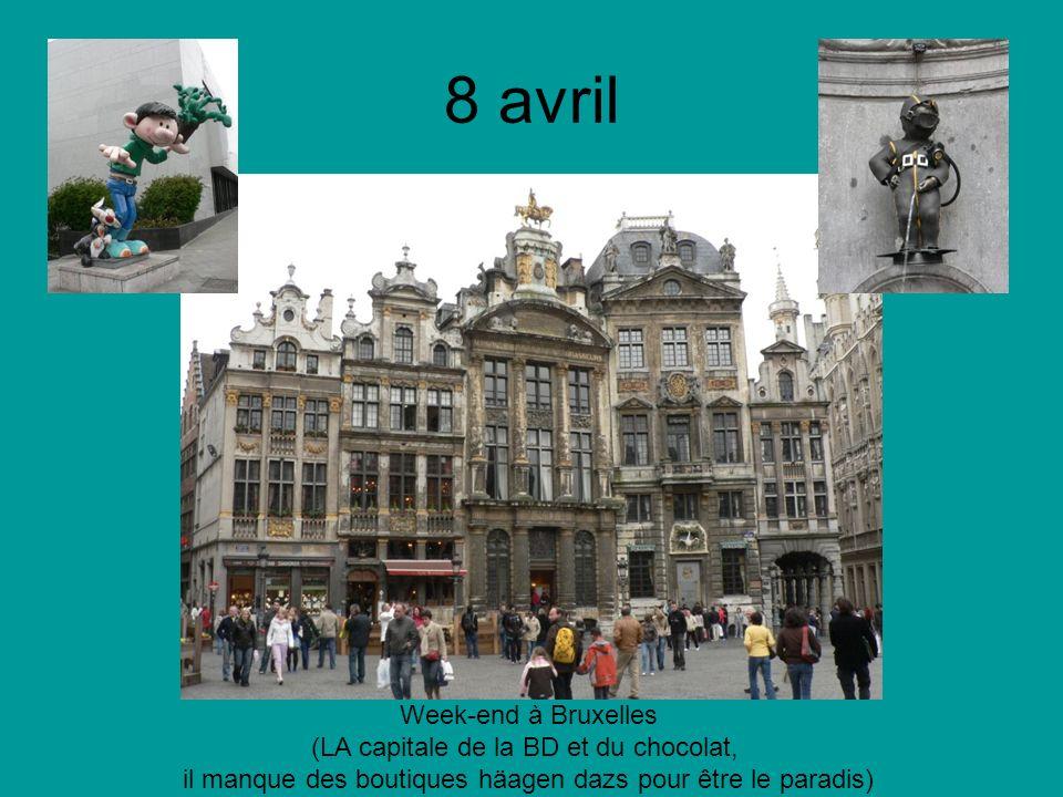 8 avril Week-end à Bruxelles (LA capitale de la BD et du chocolat, il manque des boutiques häagen dazs pour être le paradis)