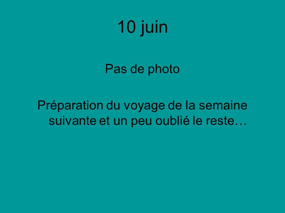 10 juin Pas de photo Préparation du voyage de la semaine suivante et un peu oublié le reste…