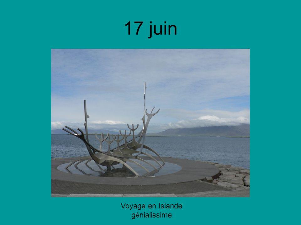 17 juin Voyage en Islande génialissime