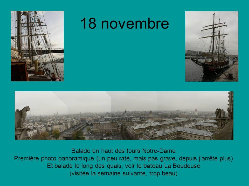 18 novembre Balade en haut des tours Notre-Dame Première photo panoramique (un peu raté, mais pas grave, depuis jarrête plus) Et balade le long des quais, voir le bateau La Boudeuse (visitée la semaine suivante, trop beau)