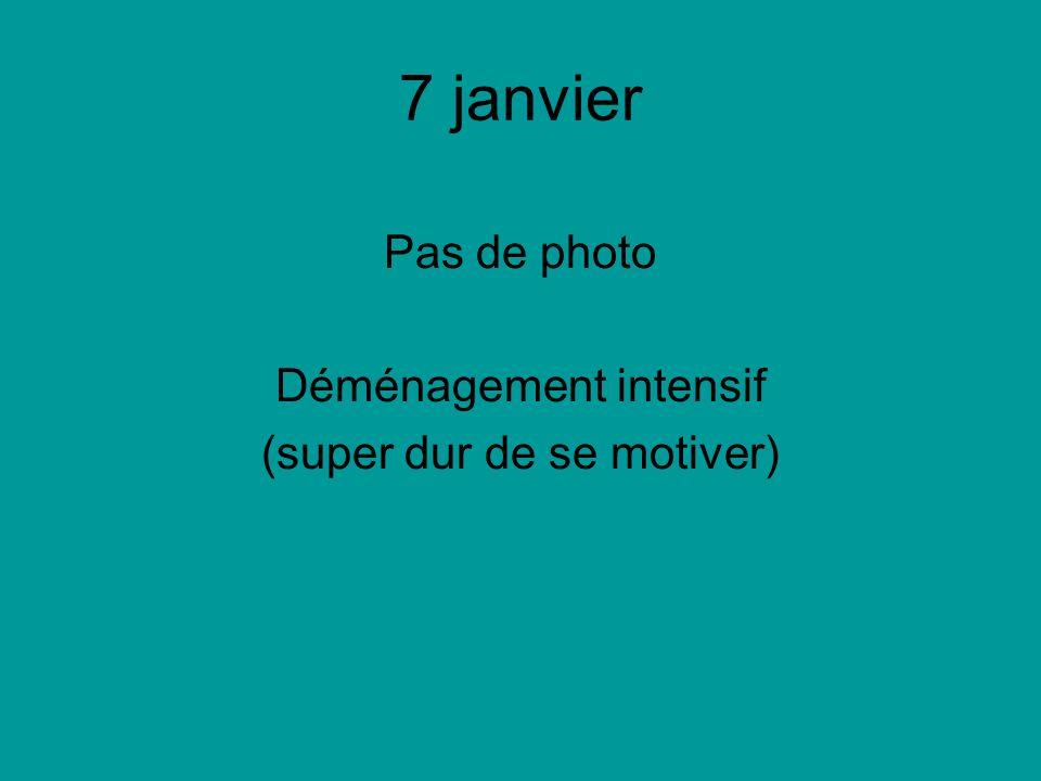 7 janvier Pas de photo Déménagement intensif (super dur de se motiver)