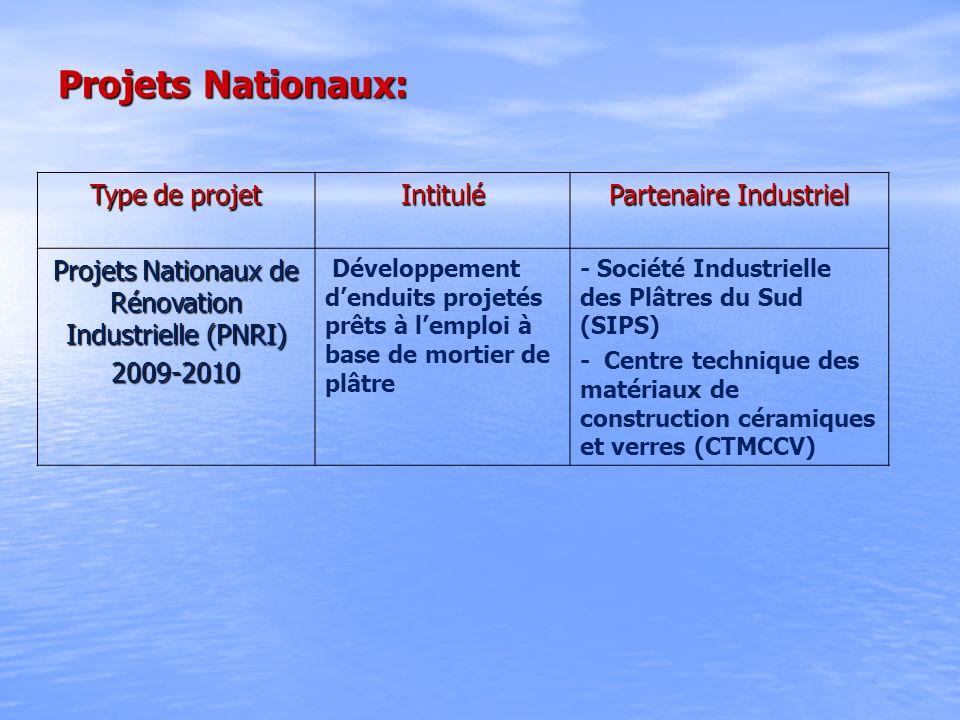 Projets Nationaux: Type de projet Intitulé Partenaire Industriel Projets Nationaux de Rénovation Industrielle (PNRI) 2009-2010 Développement denduits