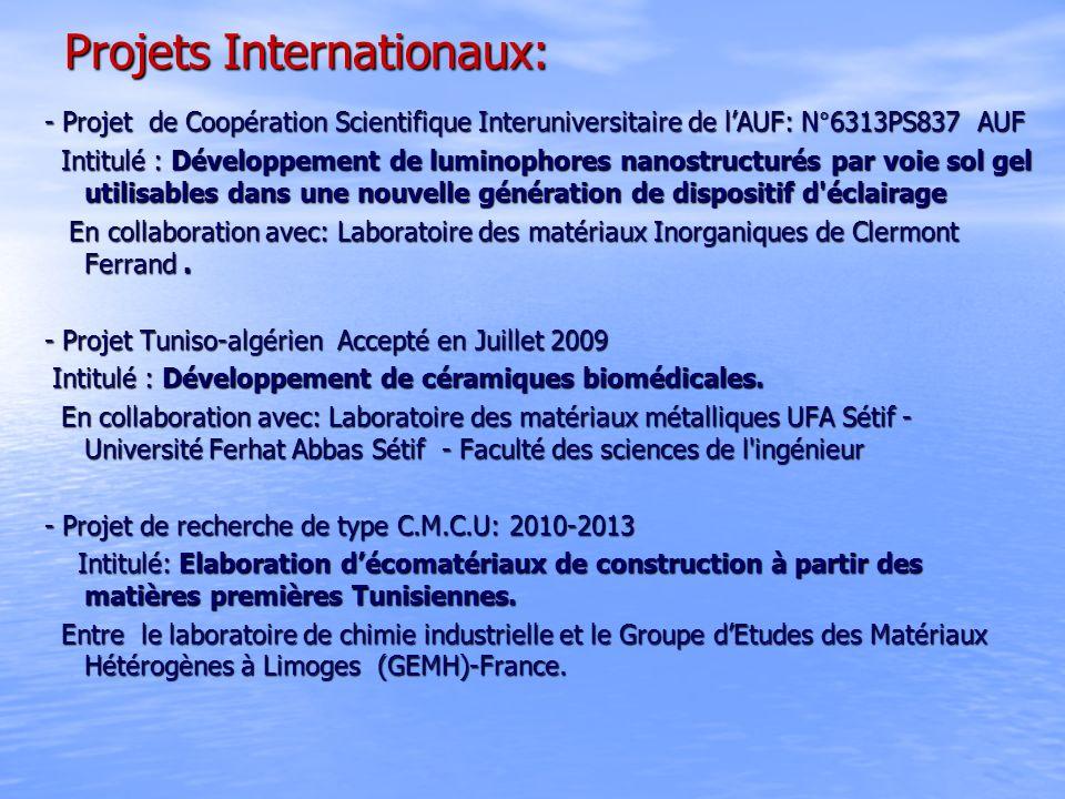 Projets Internationaux: - Projet de Coopération Scientifique Interuniversitaire de lAUF: N°6313PS837 AUF Intitulé : Développement de luminophores nano