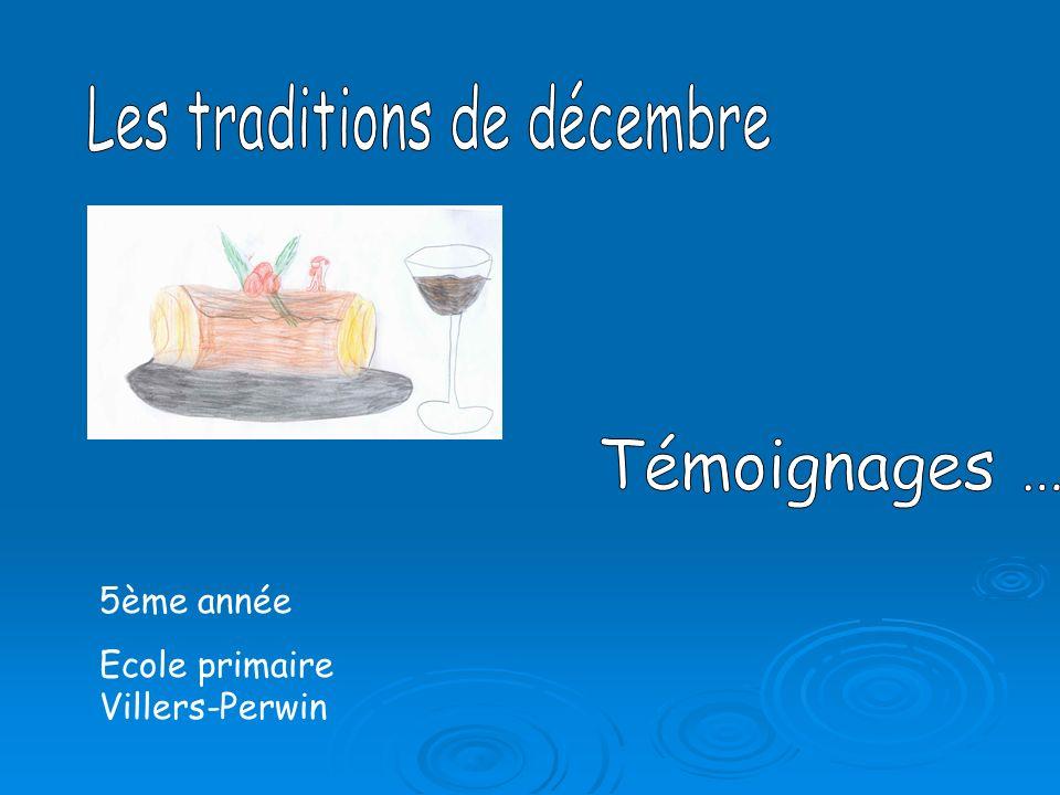 5ème année Ecole primaire Villers-Perwin