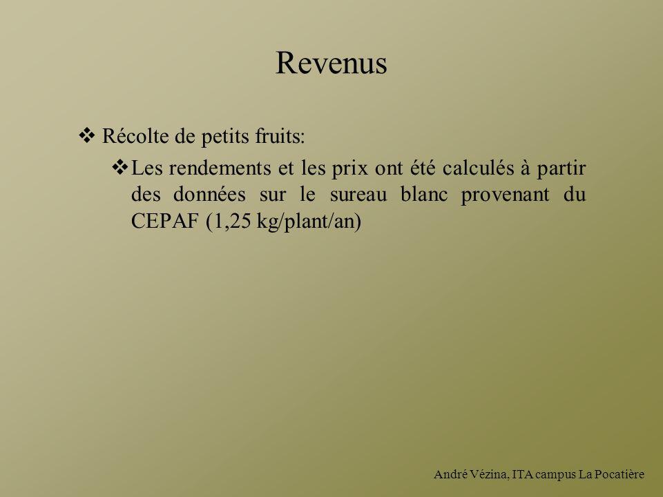 André Vézina, ITA campus La Pocatière Revenus Récolte de petits fruits: Les rendements et les prix ont été calculés à partir des données sur le sureau