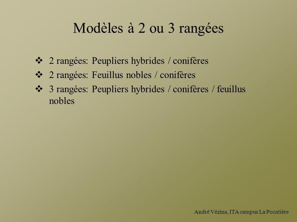 André Vézina, ITA campus La Pocatière Modèles à 2 ou 3 rangées 2 rangées: Peupliers hybrides / conifères 2 rangées: Feuillus nobles / conifères 3 rang