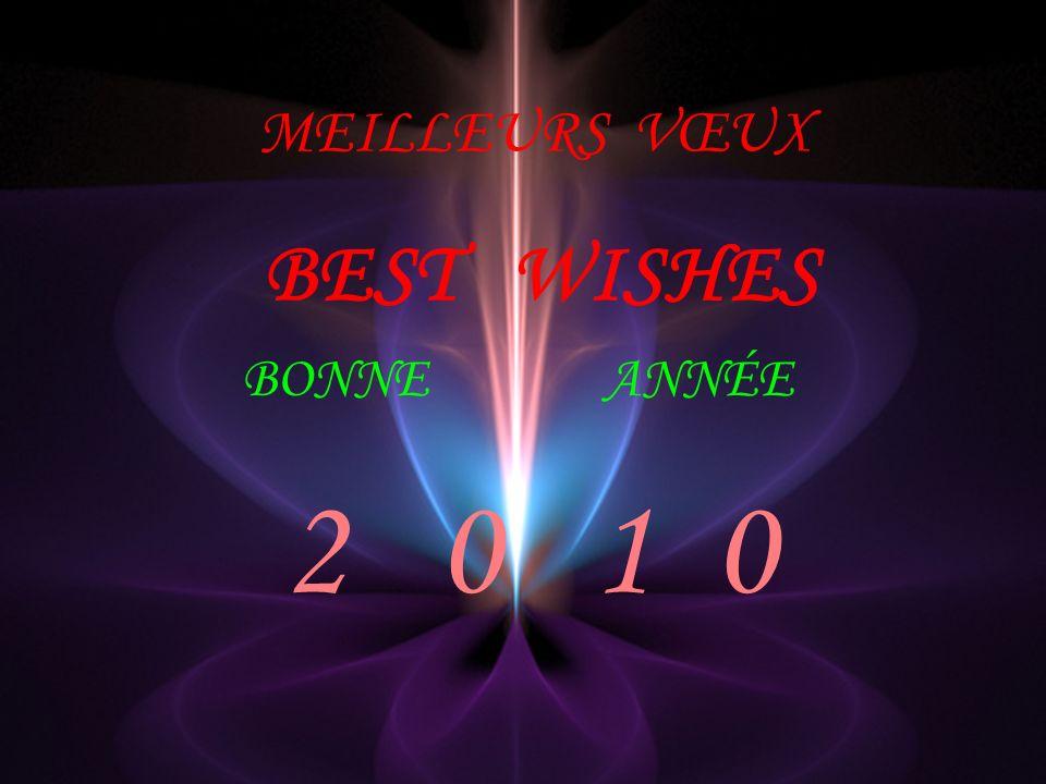 MEILLEURS VŒUX BEST WISHES BONNEANNÉE 2 0 1 0