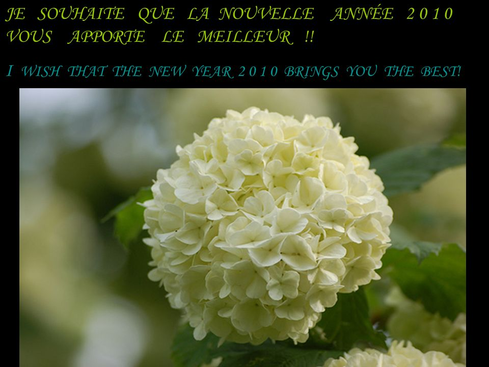 MAIS FAITES LEXERCICE : REGARDEZ–VOUS, ET REGARDEZ AUTOUR DE VOUS, VOUS VERREZ !! BUT MAKE THE YEAR: LOOK - YOU AND LOOK AROUND YOU, YOU WILL SEE!