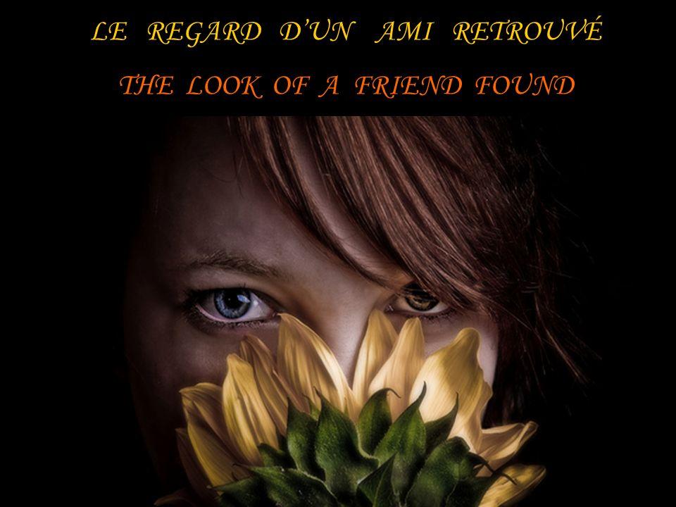LE REGARD DUN AMI RETROUVÉ THE LOOK OF A FRIEND FOUND