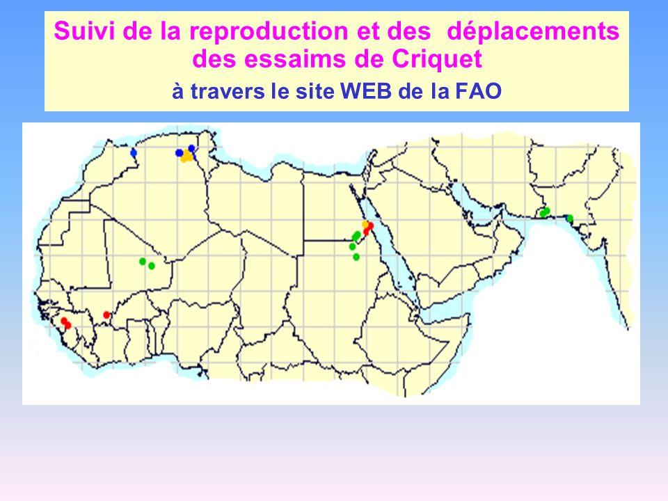 Suivi de la reproduction et des déplacements des essaims de Criquet à travers le site WEB de la FAO