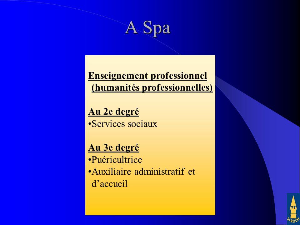 26 Enseignement professionnel (humanités professionnelles) Au 2e degré Services sociaux Au 3e degré Puéricultrice Auxiliaire administratif et daccueil A Spa