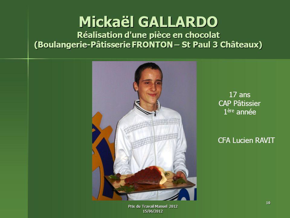 Mickaël GALLARDO Réalisation d'une pièce en chocolat (Boulangerie-Pâtisserie FRONTON – St Paul 3 Châteaux) 17 ans CAP Pâtissier 1 ère année CFA Lucien