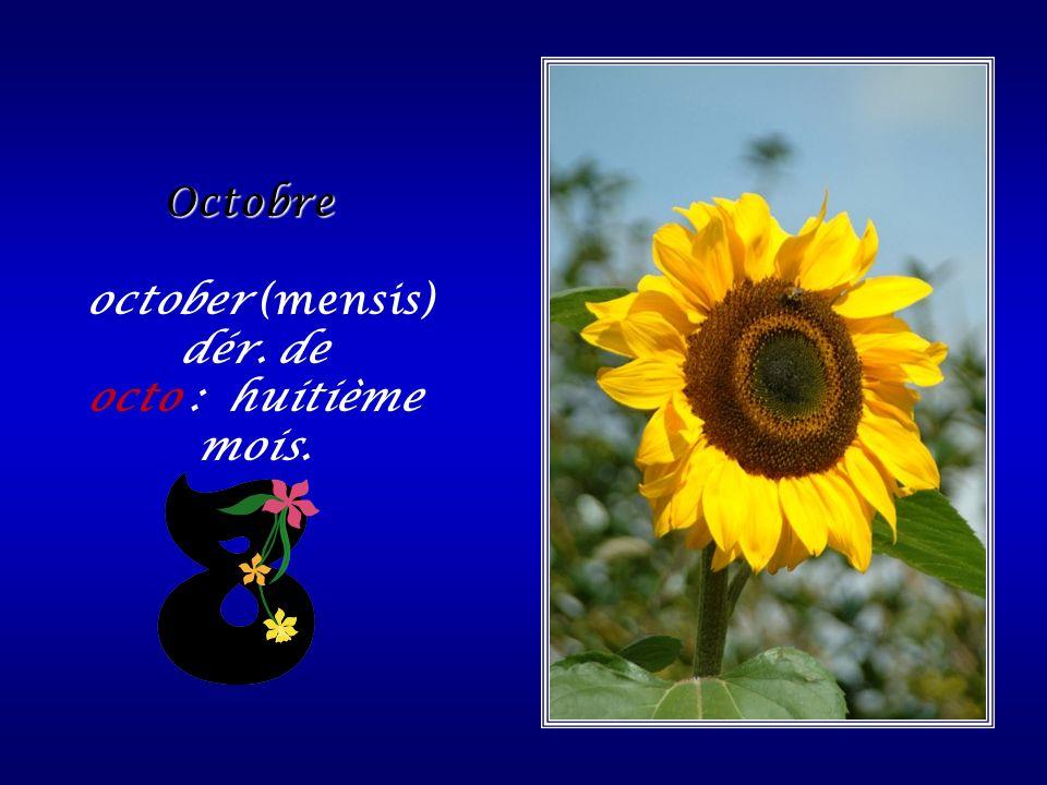 Septembre de septem (mensis): septième mois.