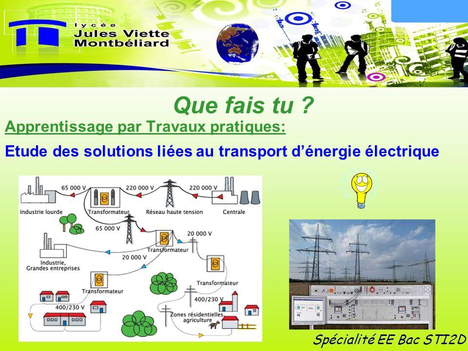 Spécialité EE Bac STI2D Que fais tu ? Apprentissage par Travaux pratiques: Etude des solutions liées au transport dénergie électrique