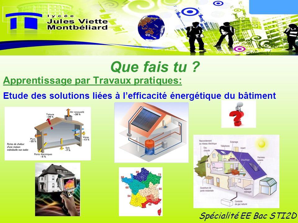 Spécialité EE Bac STI2D Que fais tu ? Apprentissage par Travaux pratiques: Etude des solutions liées à lefficacité énergétique du bâtiment