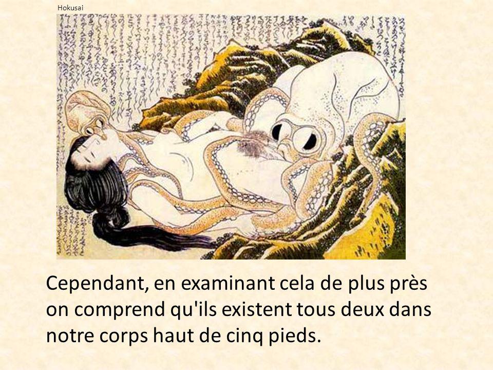 Cependant, en examinant cela de plus près on comprend qu'ils existent tous deux dans notre corps haut de cinq pieds. Hokusai