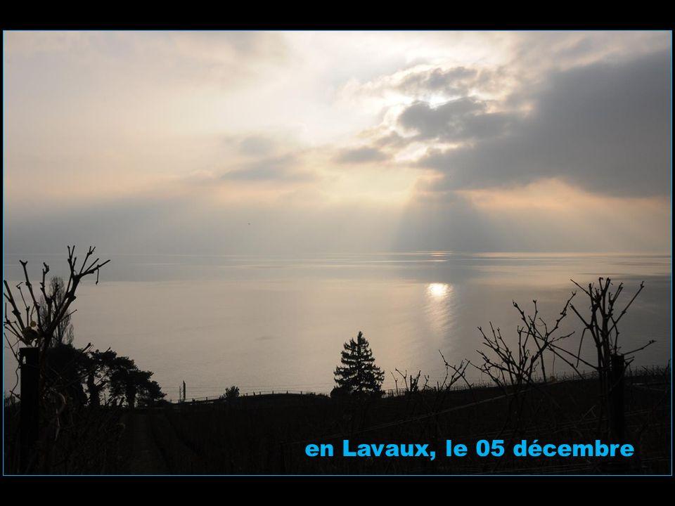 à Sauvabelin le 03 décembre