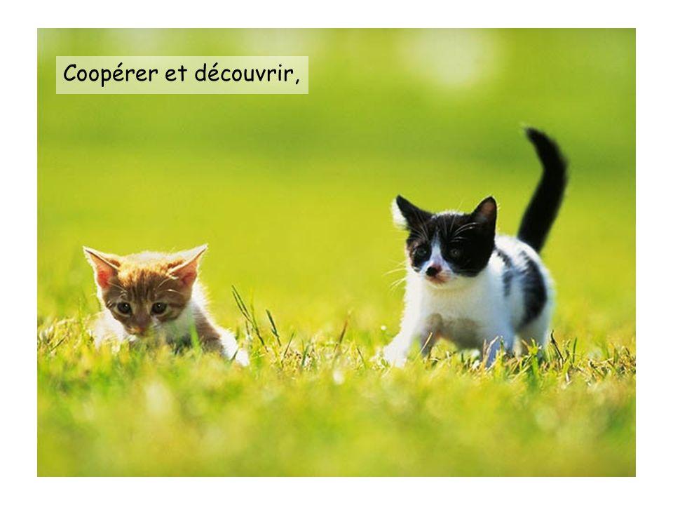 Coopérer et découvrir,