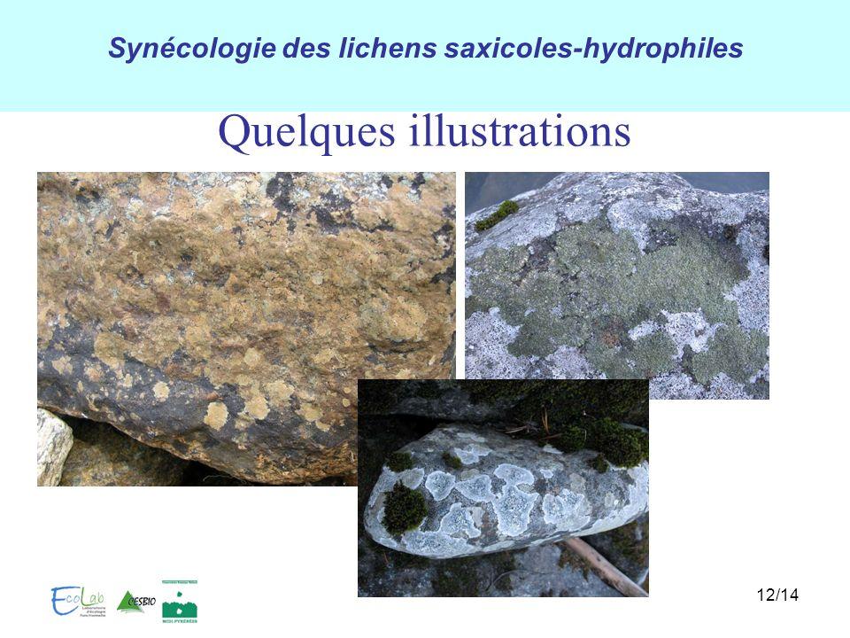 Synécologie des lichens saxicoles-hydrophiles 12/14 Quelques illustrations