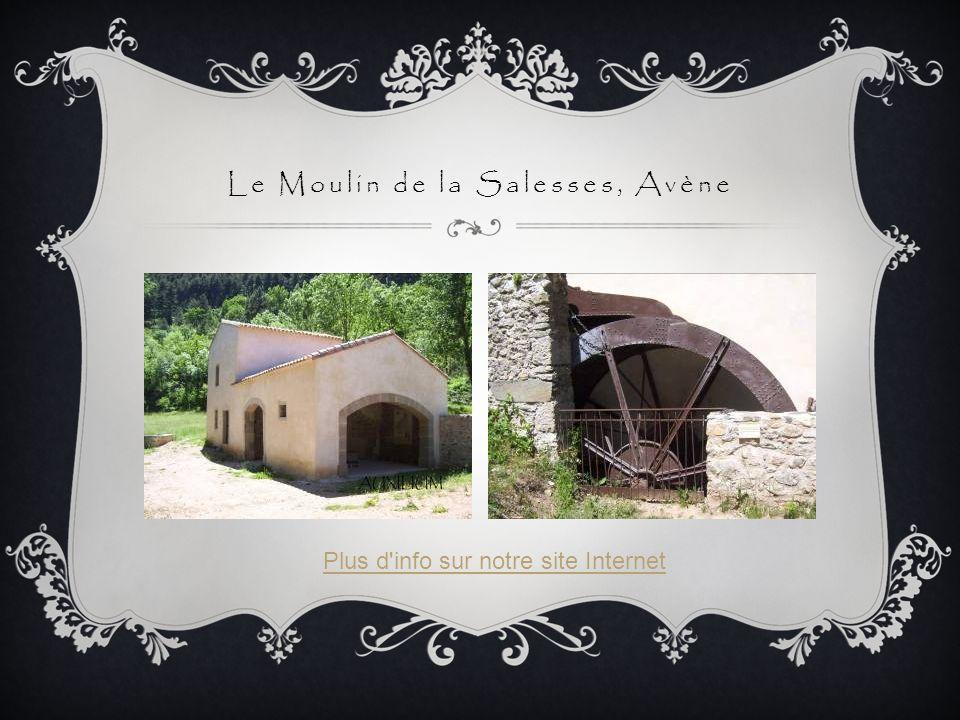 Le Moulin de la Salesses, Avène Plus d'info sur notre site Internet