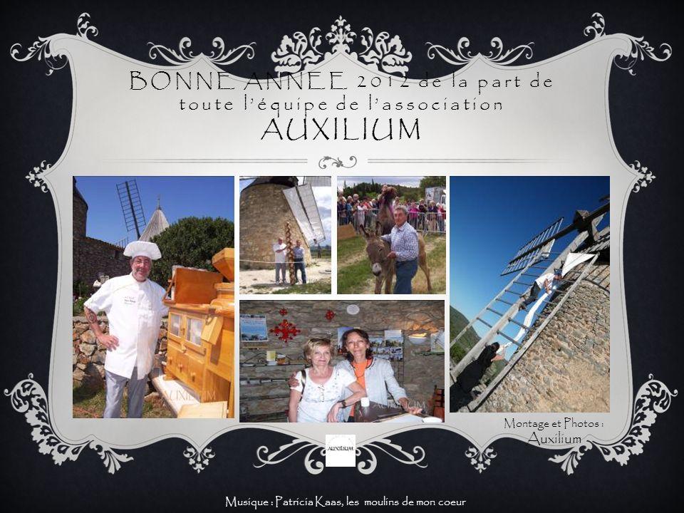 BONNE ANNEE 2012 de la part de toute léquipe de lassociation AUXILIUM Musique : Patricia Kaas, les moulins de mon coeur Montage et Photos : Auxilium