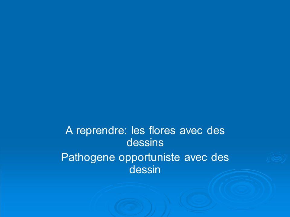 1 - Les bactéries pathogènes - bactéries responsables d une maladie même chez le sujet sain (ex typhoïde, choléra, tuberculose, méningite...).