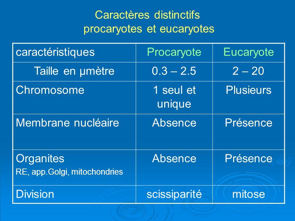 Caractères distinctifs procaryotes et eucaryotes caractéristiquesProcaryoteEucaryote Taille en µmètre0.3 – 2.52 – 20 Chromosome1 seul et unique Plusie