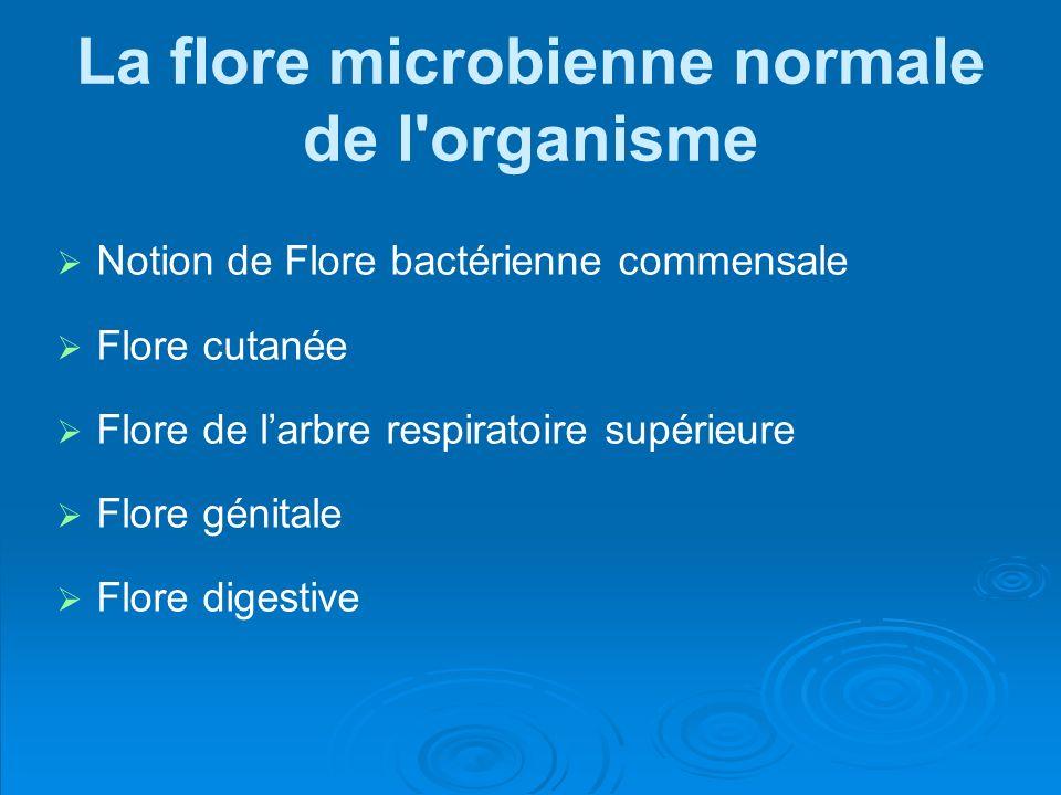 La flore microbienne normale de l'organisme Notion de Flore bactérienne commensale Flore cutanée Flore de larbre respiratoire supérieure Flore génital