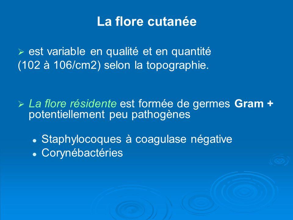 La flore cutanée est variable en qualité et en quantité (102 à 106/cm2) selon la topographie. La flore résidente est formée de germes Gram + potentiel