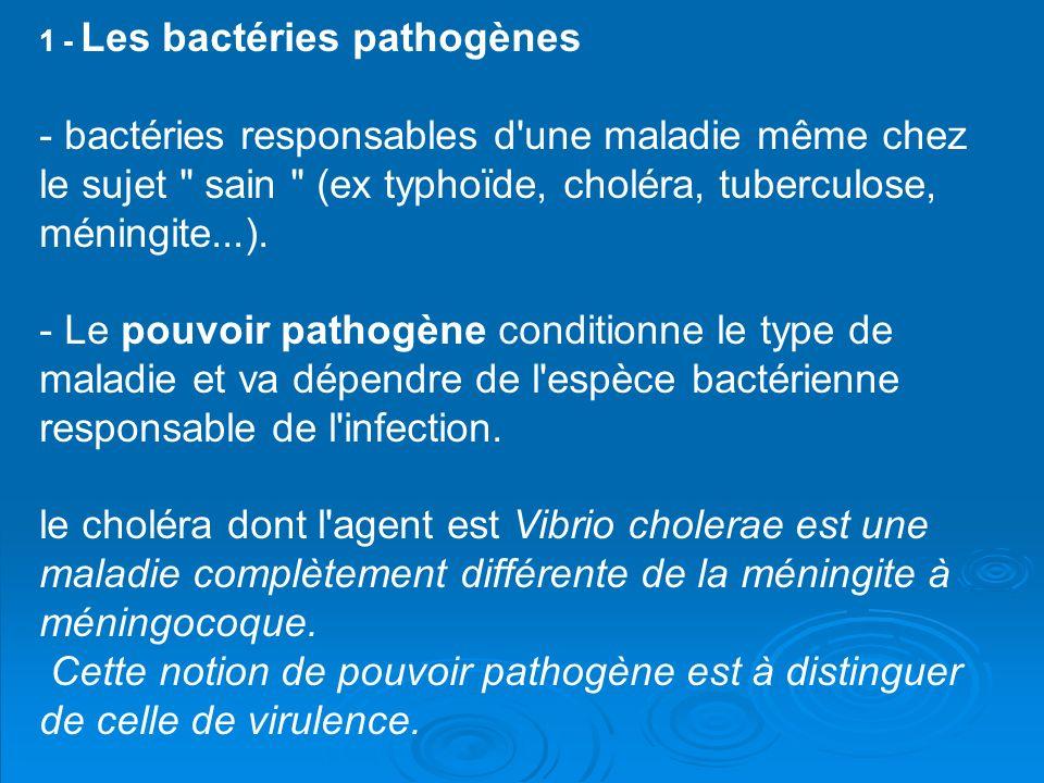 1 - Les bactéries pathogènes - bactéries responsables d'une maladie même chez le sujet