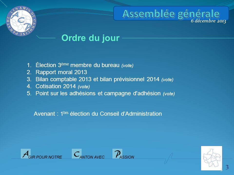 6 décembre 2013 1.Élection 3 ème membre du bureau (vote) 2.Rapport moral 2013 3.Bilan comptable 2013 et bilan prévisionnel 2014 (vote) 4.Cotisation 20