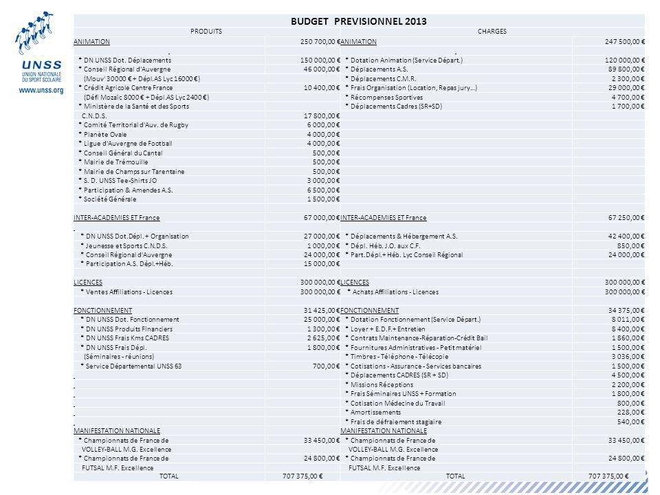 25 BUDGET PREVISIONNEL 2013 PRODUITSCHARGES ANIMATION250 700,00 ANIMATION247 500,00 * DN UNSS Dot.