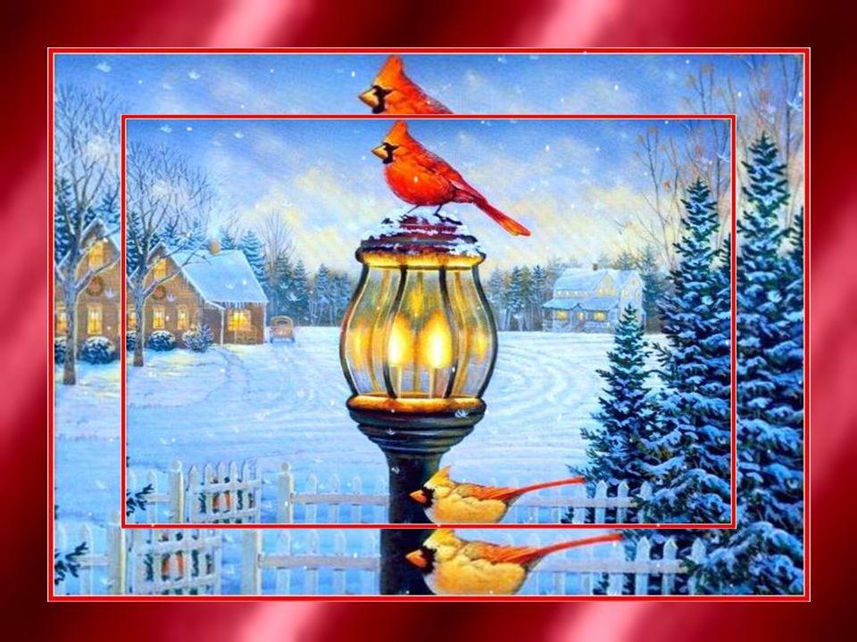 Les KAPITENE et les KACHELWA vous souhaitent Joyeux Noël! Bonne année 2014